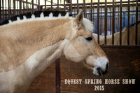 Equest Spring Horse Show 2015